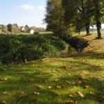 Le Soultzbach automne 2