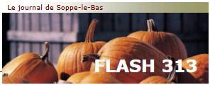 Flash 313 automne_couv