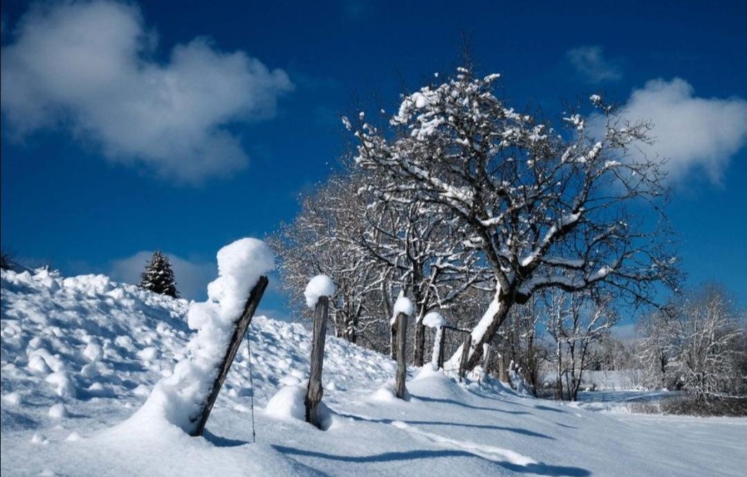hiver 2021 20