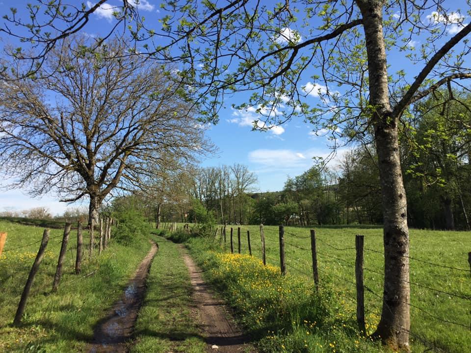 Chemin vers Goldschmitt de Sandrine Jenn 3