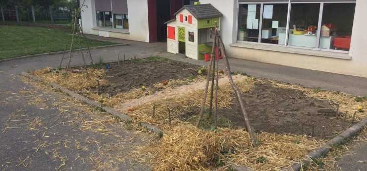 Jardin ECO responsable
