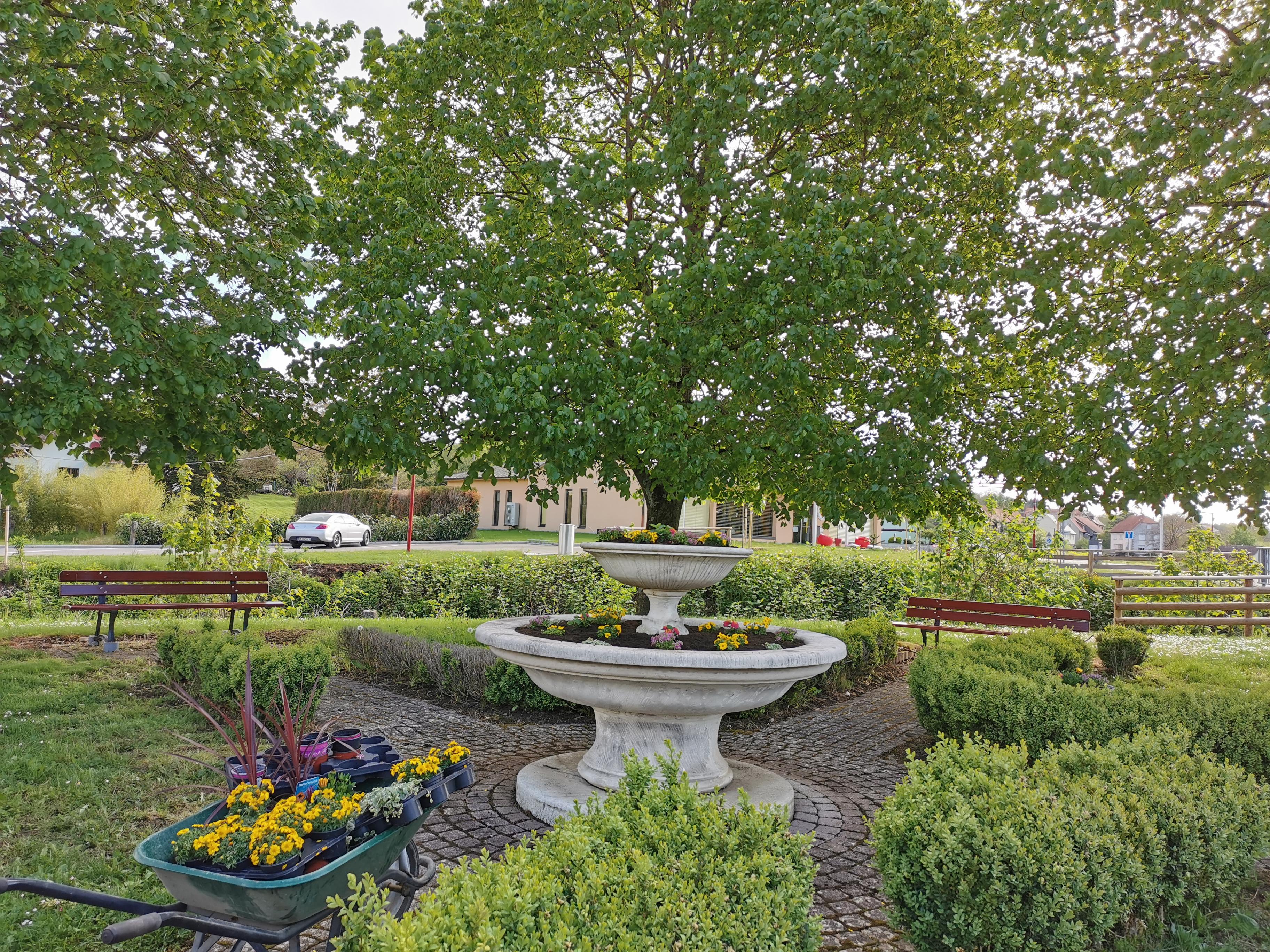 Plantation fontaine 2021 4